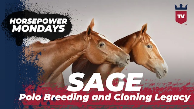 SAGE - Polo Breeding and Cloning Legacy