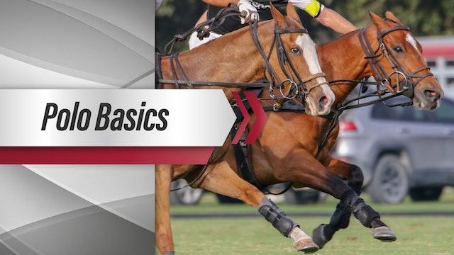Polo Basics