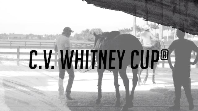 Stories: C.V. Whitney Cup®