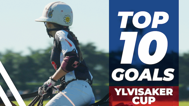 Top 10 Goals - Ylvisaker