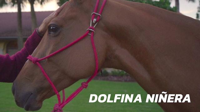 Dolfina Niñera - Gringo Colombres