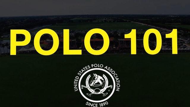 Polo 101