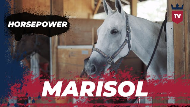 Horsepower - Marisol