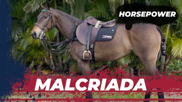 Malcriada  - Pipe Márquez