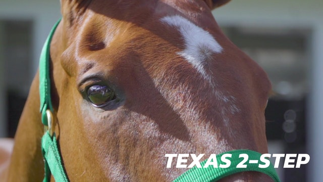 Texas 2-Step - Jeff Hall