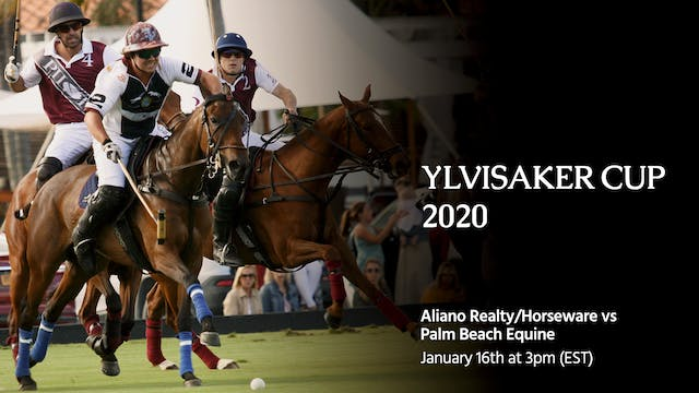 Aliano Realty/Horseware vs. Palm Beac...
