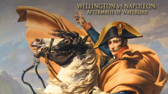 Wellington VS Napoleon - Aftermath of Waterloo