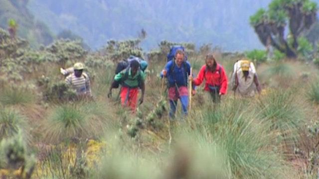 Trekking in Uganda and the Congo (Digital Download)