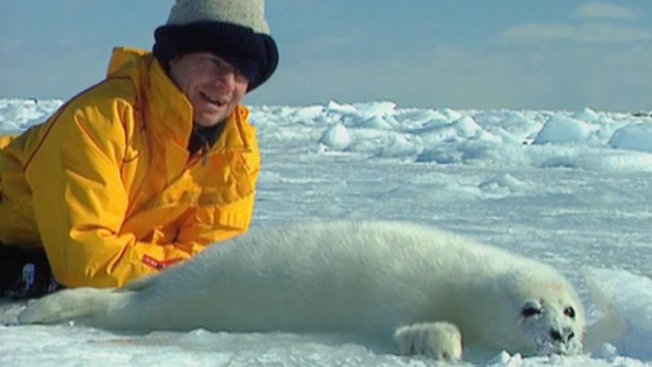 Globe Trekker - Arctic Canada
