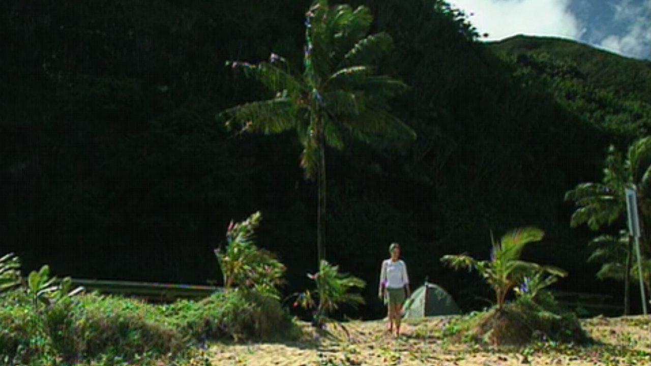 Hawaii (Digital Download)