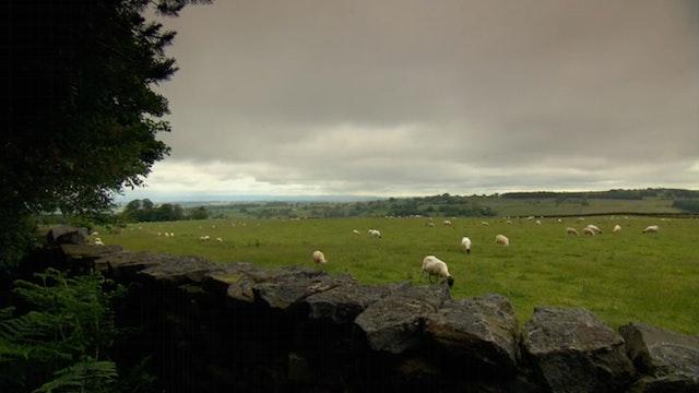 Northeast England (Digital Download)