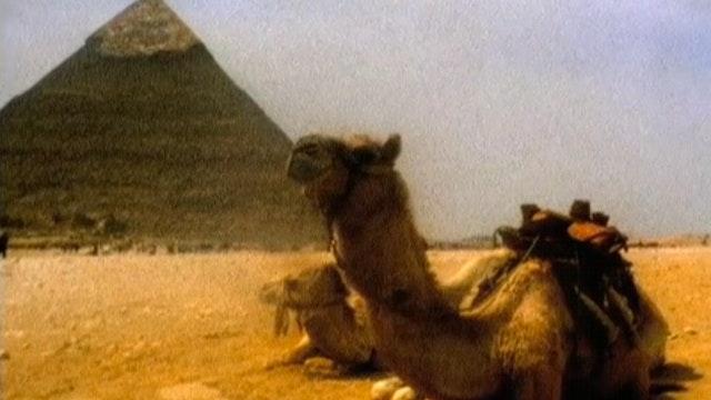 Egypt (Digital Download)