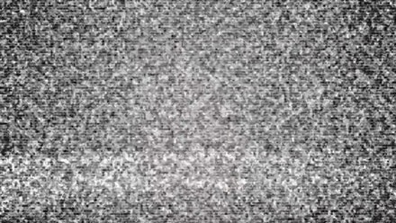 GLOBI Video