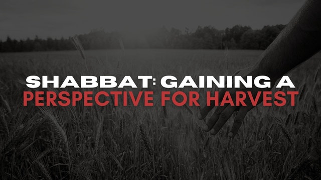 Shabbat: Gaining A Perspective For Harvest (06/04)