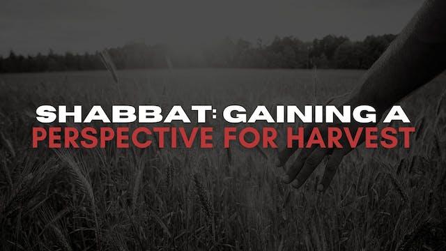 Shabbat: Gaining A Perspective For Ha...