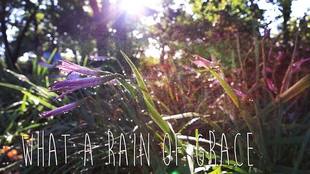 Rain of Grace
