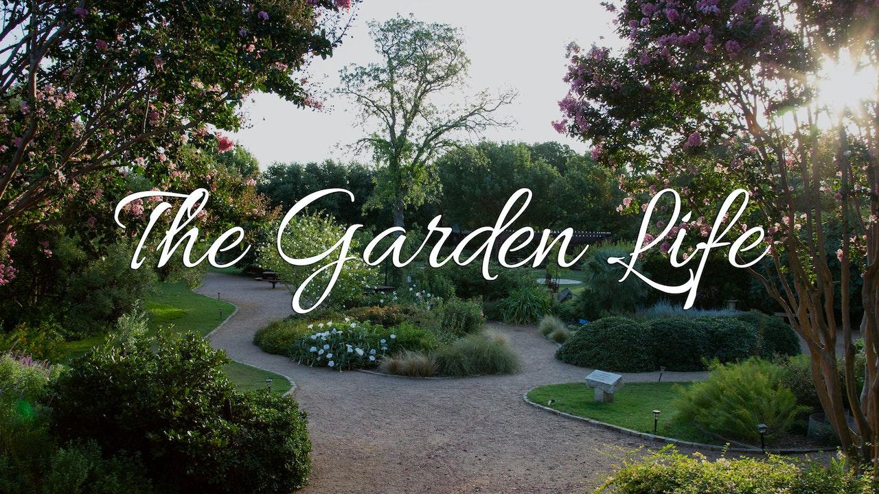 The Garden Life