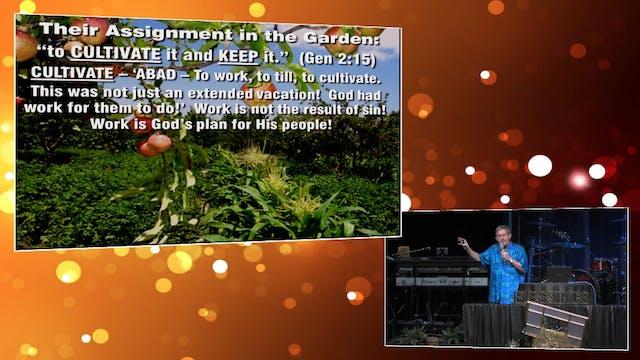 God Planted a Garden! God's Training ...