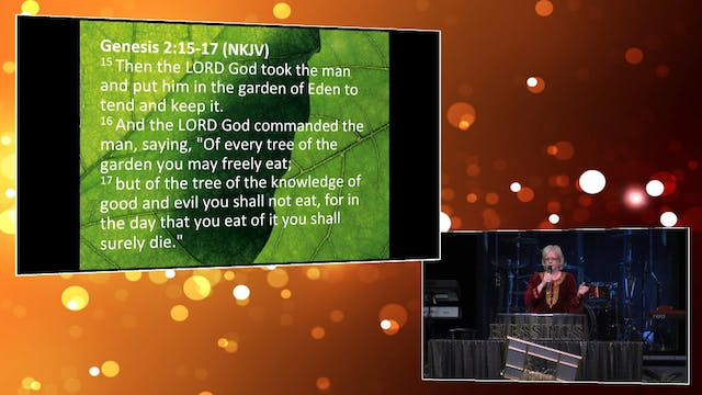 The Planting of the Lord! - Pam Pierce