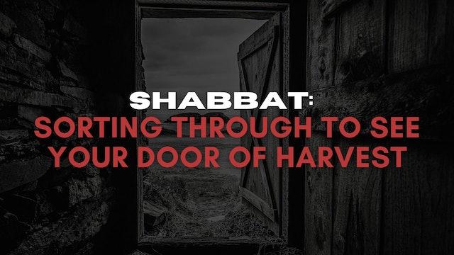 Shabbat: Sorting Through To See Your Door of Harvest (06/25)