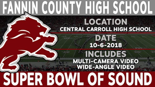 Fannin County High School - Super Bowl Of Sound