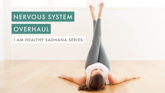 Nervous System Overhaul