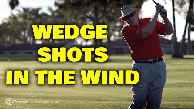PELZ CORNER 2: Wedge Shots in the Wind