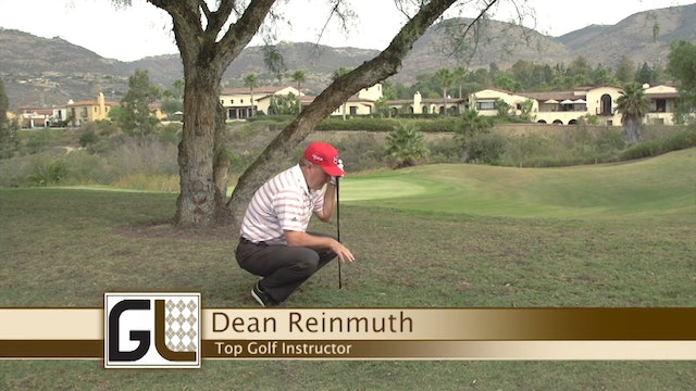 Dean Reinmuth: Under the Tree