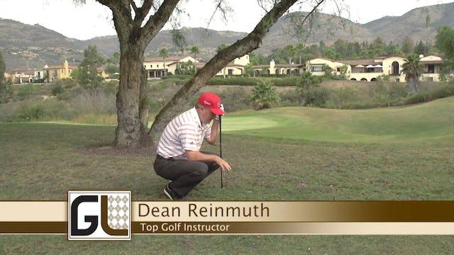 Dean Reinmuth: Under the Tree
