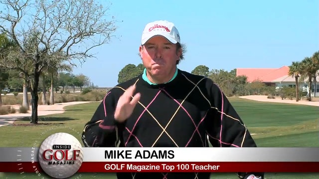 Mike Adams: Punch Shot