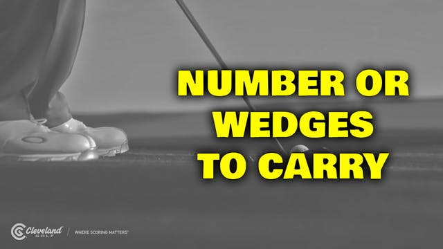 PELZ CORNER : Number of Wedges to Carry