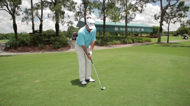 Fred Griffin: Wedge Distance