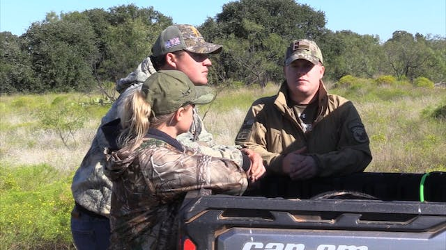 Coffee Flats: Hog Hunting with Gold S...