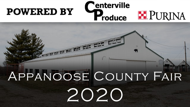 Dog Show - 2020 Appanoose County 4-H Livestock Show - Part 3