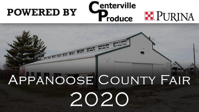 Swine - 2020 Appanoose County 4-H Livestock Show