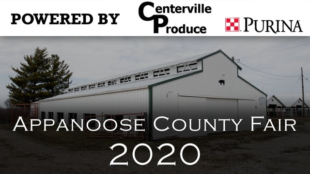 Swine - 2020 Appanoose County 4-H Liv...