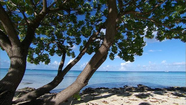 French Polynesia - Blue Lagoon
