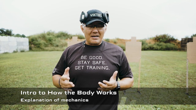 MSP - How the Body Works