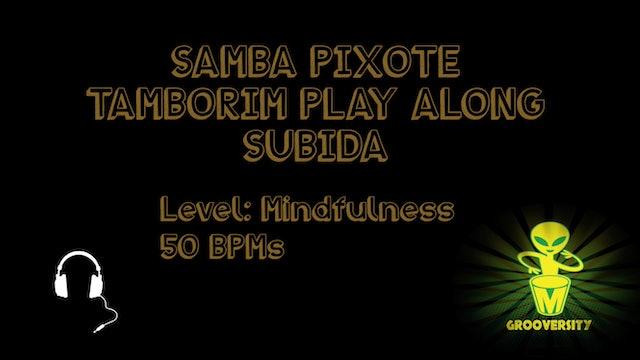 Samba Pixote Tamborim Subida Playalong 50