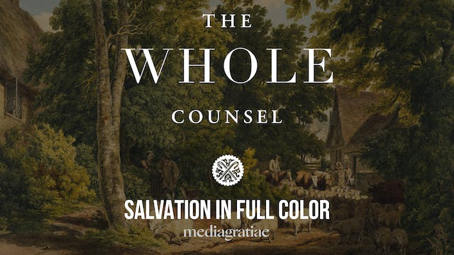 Salvation in Full Color - The Whole C...