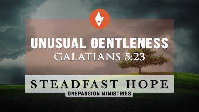 Unusual Gentleness - Steadfast Hope -...