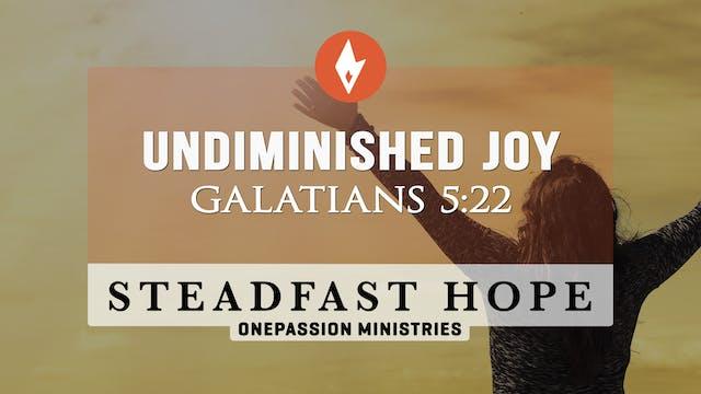 Undiminished Joy - Steadfast Hope - D...