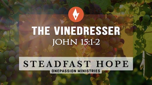 The Vinedresser - Steadfast Hope - 3/...