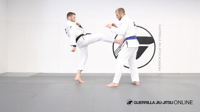 Keep Distance - Simple Leg Kicks and Push Kicks