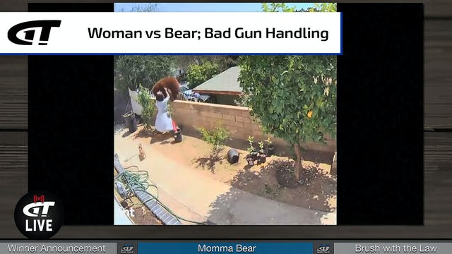 """""""Momma Bear"""" vs Real Momma Bear; Ryan..."""