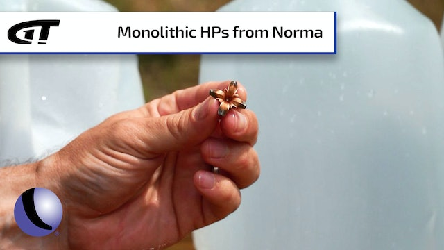 Picture Perfect Self-Defense Ammo: Norma MHP
