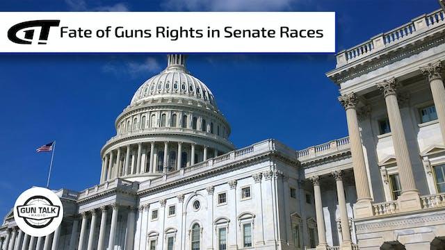 Two GA Senate Seats Up For Grabs