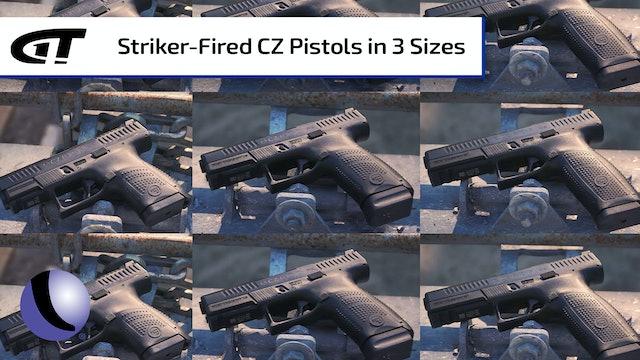 Family of CZ P-10s