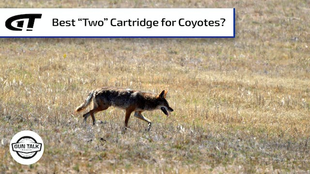 The Best Caliber for Nuisance Coyotes