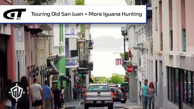 Iguana Go To Puerto Rico: P4